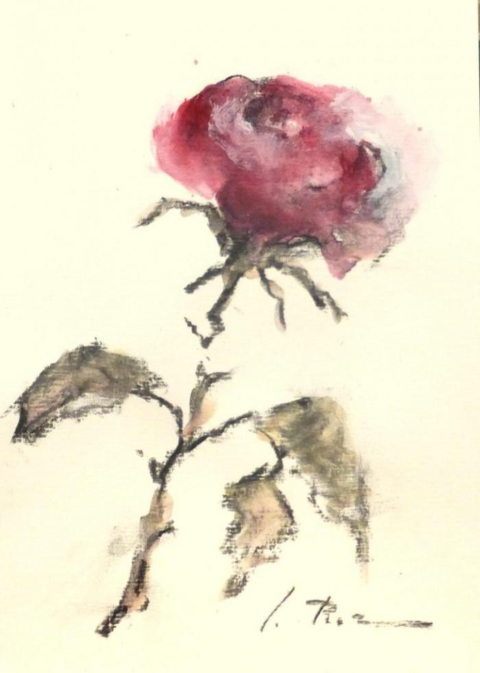 En el Día del Libro, regalo rosas.